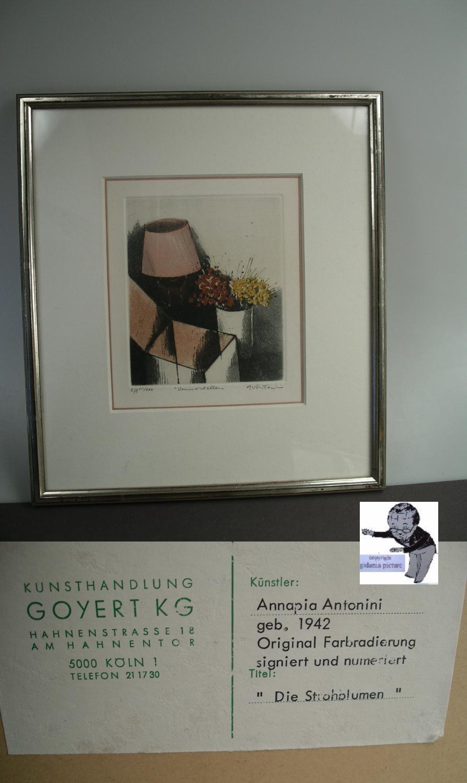 Annapia Antonini original Farbradierung Die Strohblumen im Rahmen ...